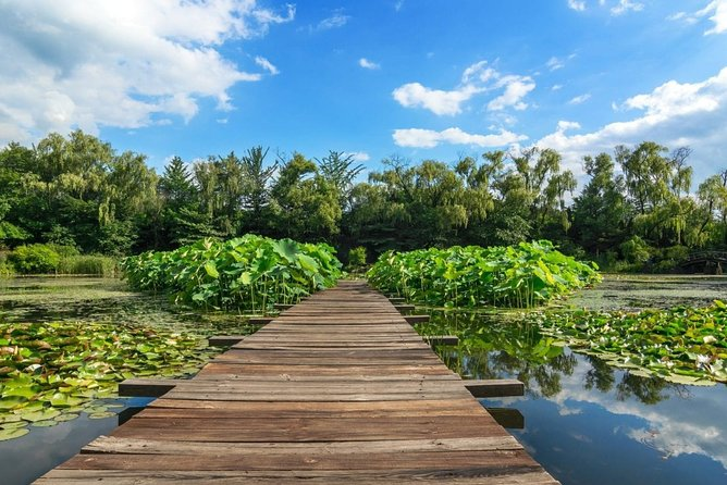 A healing course to enjoy the beauty of nature