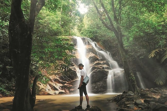Templer Park and Kanching Waterfall Tour - A Rendezvous with Nature