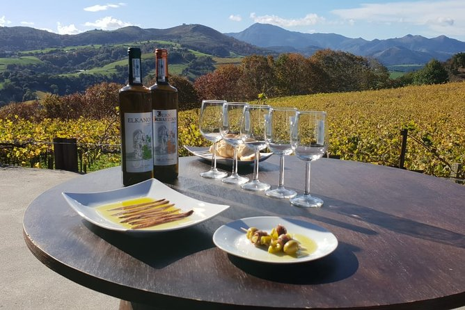 Txakoli winery small group tour with tasting in Getaria and Zarautz