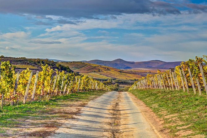 Full-Day Tokaj UNESCO World Heritage Site Private Wine Tour
