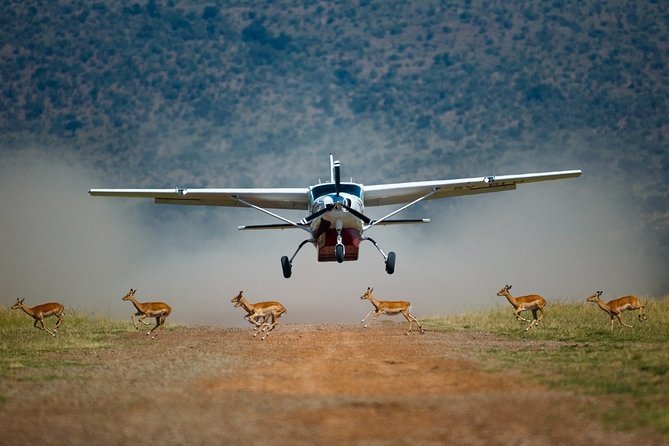 3-Day Masai Mara Private Flying Safari with 4x4 Game Drives