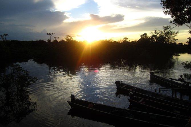 Pampas in Rurrenabaque - 3 Days