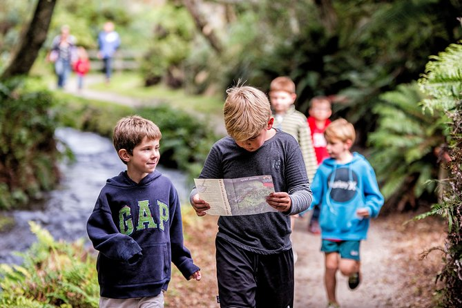 Buried Village of Te Wairoa Tour