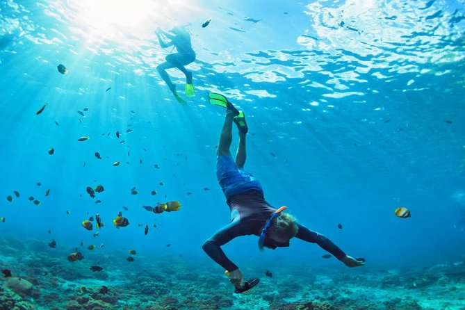 MAGICAL COZUMEL SNORKEL Full day tour. Includes Boat ride, Lunch, Transportation