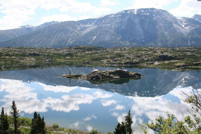 Half-Day Yukon Sightseeing Shore Excursion from Skagway