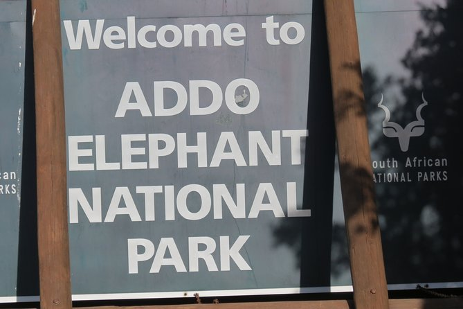 Welcome to Addo home of big 5