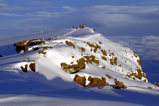 1 - Day Hiking/Climbing Mount Kilimanjaro via Marangu Route from Moshi or Arusha