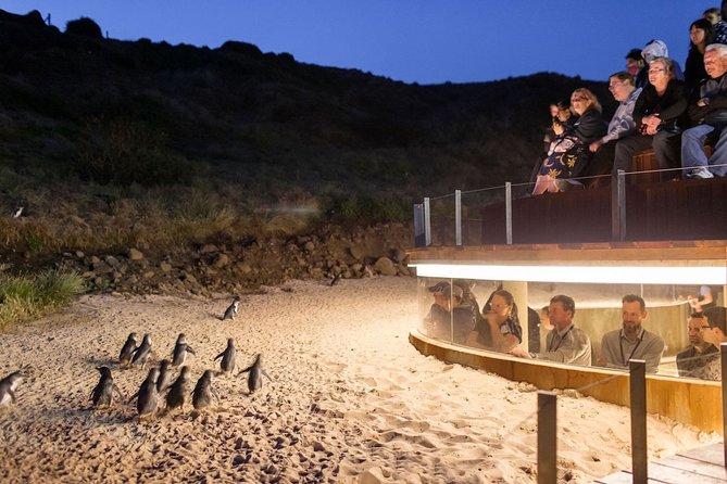 Phillip Island Express Tour
