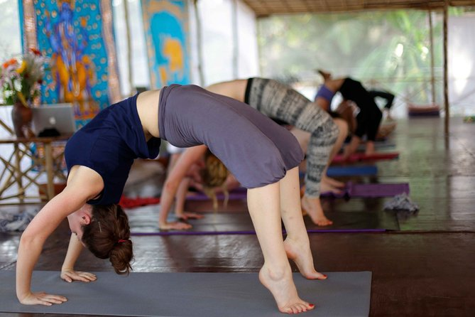 Private Yoga and Meditation Classes in Manali