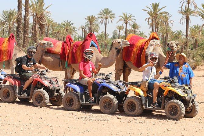 1/2 Day Quad & Dromedary Marrakech Palmeraie