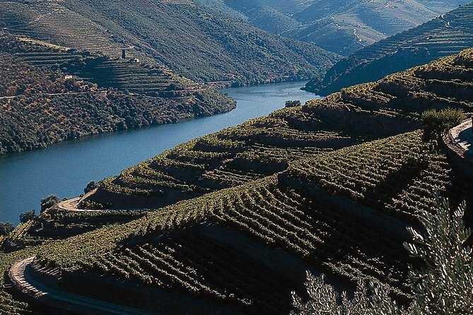 Private Douro Valley Tour Includes Wine Tasting and Boat Tour
