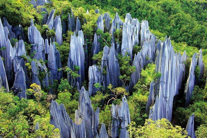 Kunming Private Day Tour to Stone Forest and Chengzi Ancient Town