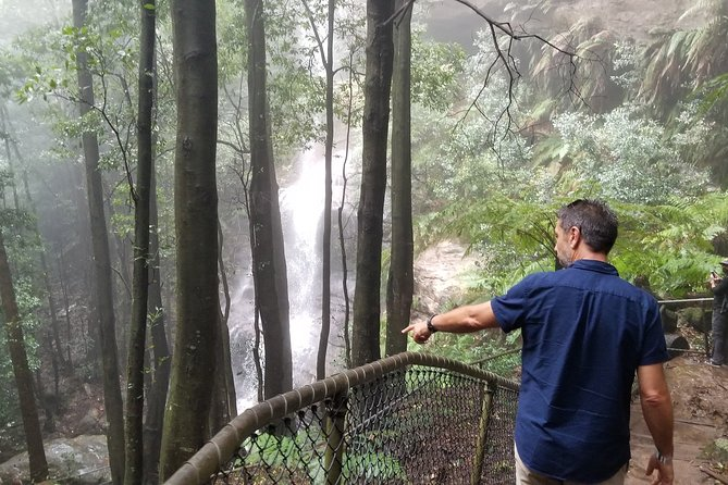 Blue Mountains Highlights, Wildlife Park and Scenic World Full Day Private Tour