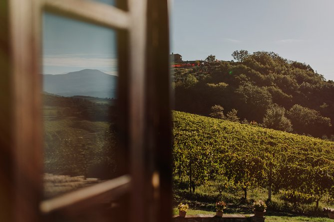 Tuscany Wine experience at the estate