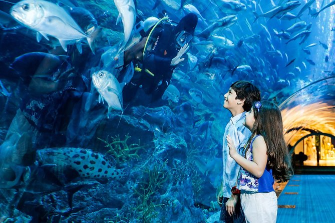 Dubai Aquarium + Under Water Zoo Ticket with Transfers