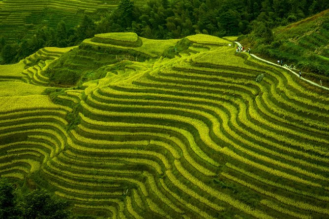 Terraced Field Impression and Minority People's Village Private Excursion Tour