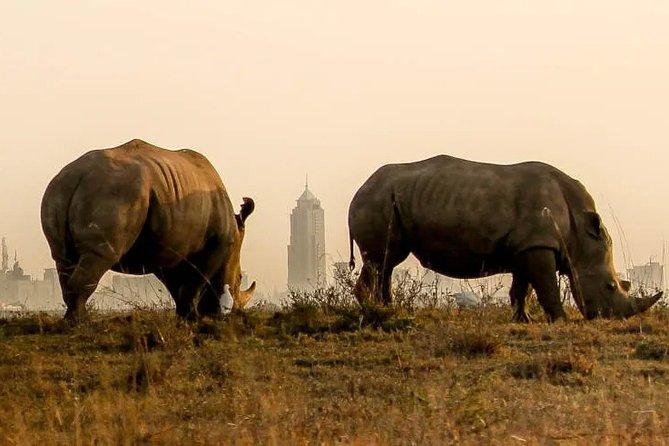 Nairobi National Park Game Drive & Carnivore Restaurant Lunch or Dinner
