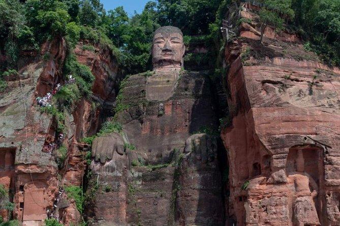 Giant Panda Base and Leshan Buddha Tour from Chengdu