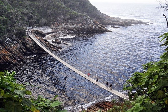 Zipline & Storms River Mouth Cruise Tour in Tsitsikamma National Park