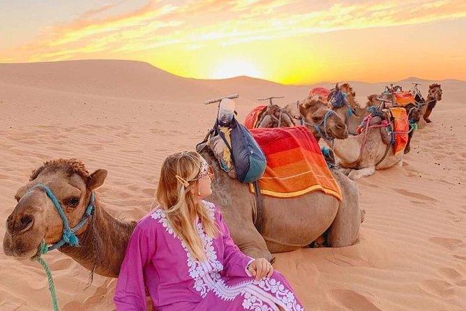 Desert tour from Fez to Merakkech 3 Days 2 Nights
