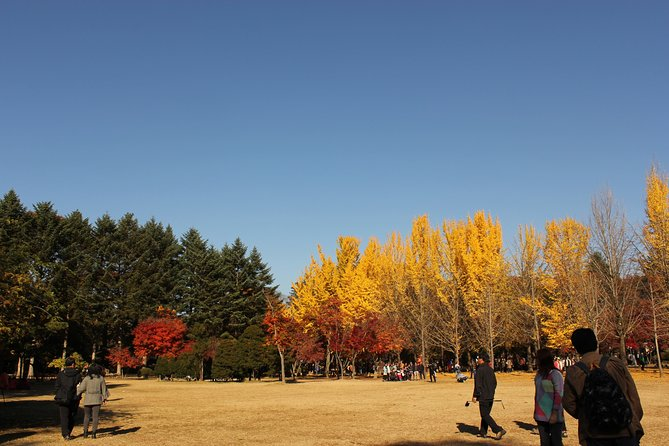 Out of Seoul, Eastern side including Nami Island