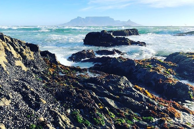 Authentic Cape Town Tour