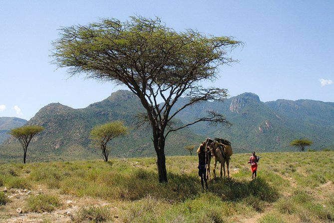 10 days of Turkana fossil hunting in Kenya experience