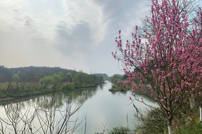 Private Day Tour to Taohuayuan National Park from Changsha