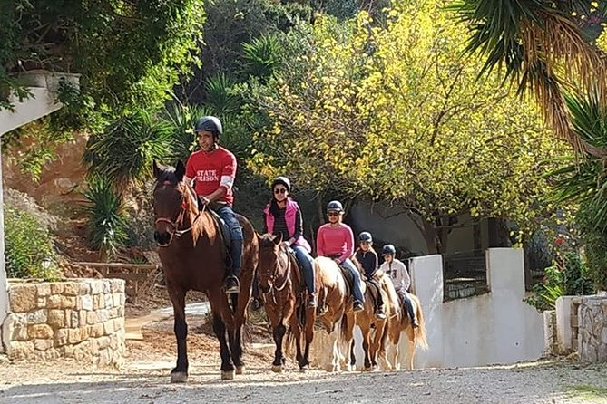 One hour horseriding tour in Nature
