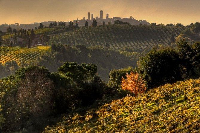 Chianti en pequeños grupos y San Gimignano Sunset Trip desde Siena