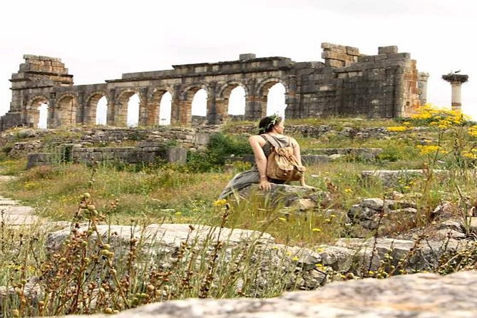 fez to volubilis and meknes shared day trip