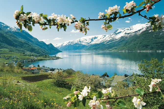 Self-Guided Full-Day Round Trip From Oslo To Sognefjord With Flåm Railway