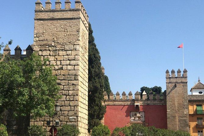 Walking tour: Torre del Oro, Cathedral, Alcázar, Archivo de Indias and Santa Cruz neighborhood