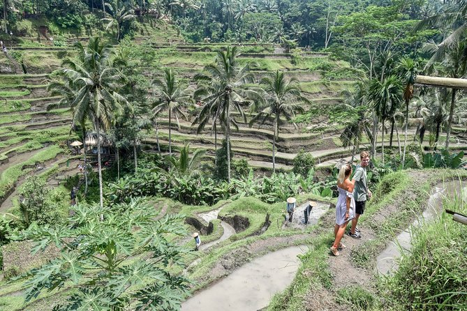 To Explore Ubud and Waterfall excluded Lunch - Halfday Private Tour