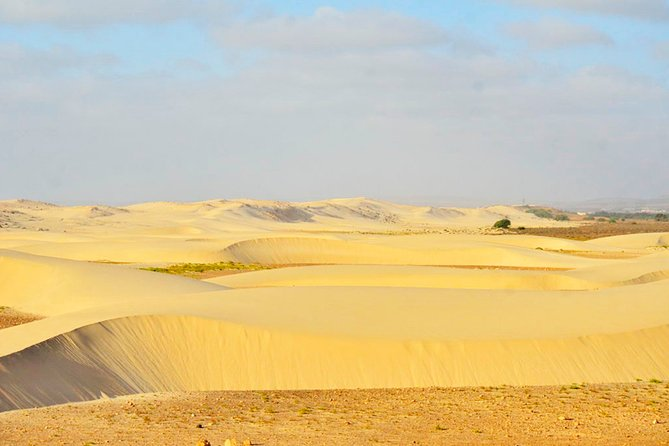 Boa Vista Island: Half-day Northern Tour + Viana Desert Adventure