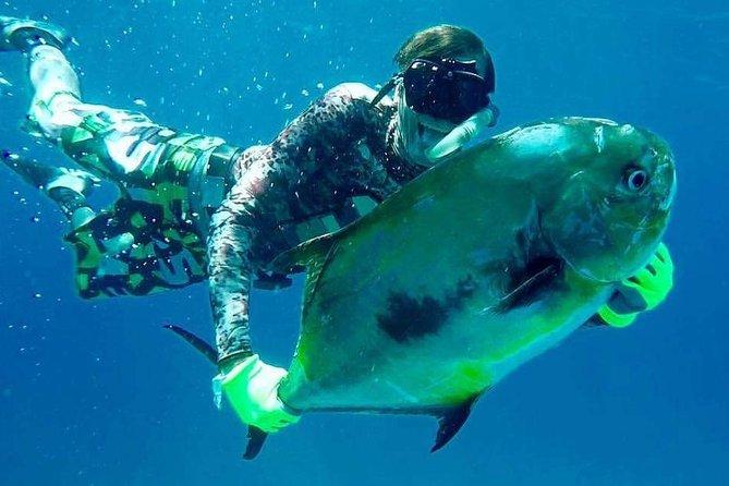 Spearfishing in Tulum or Playa del Carmen