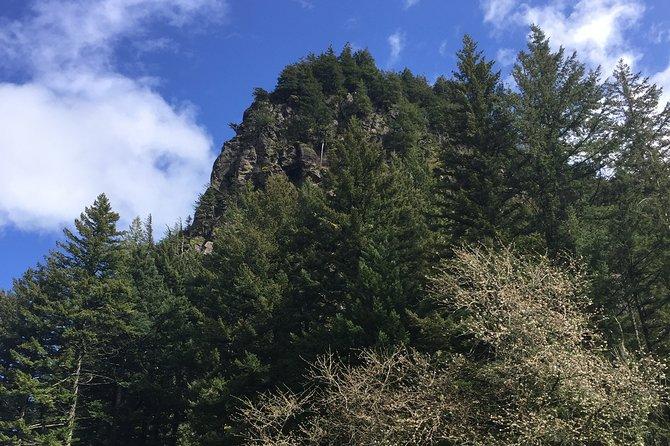 Columbia River Gorge & Falls Tour