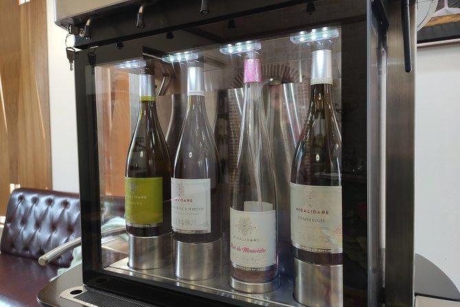 Sofia Exquisite Wine Tasting