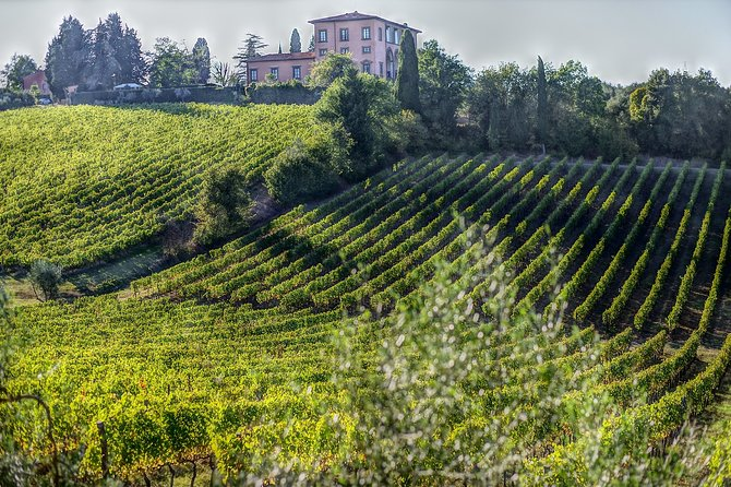 Private Full-Day Tour to Val D'Orcia from Siena with Pickup