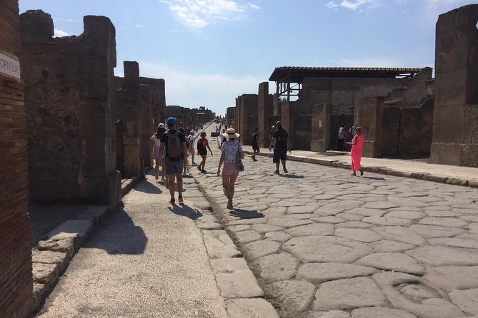 Pompeii guided walking tour ticket included