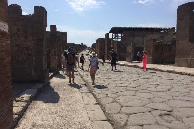 Naples Shore Excursion: Pompeii Independent Half-Day Trip
