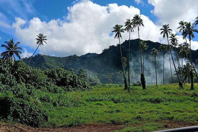 Private Custom Tour: Half-Day Rarotonga Island by Electric Tuk Tuk