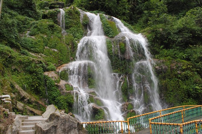 Darjeeling and Gangtok (05 nights / 06 Days)