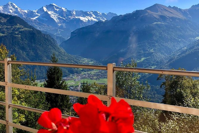 Jungfraujoch (Private Tour)