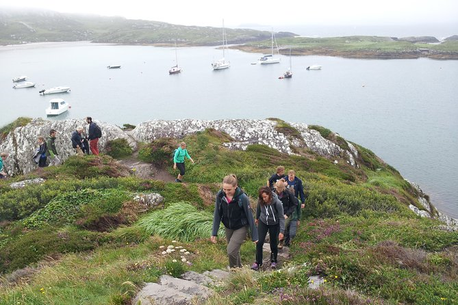 7 Day Wild Atlantic Adventure Small Group Tour From Dublin