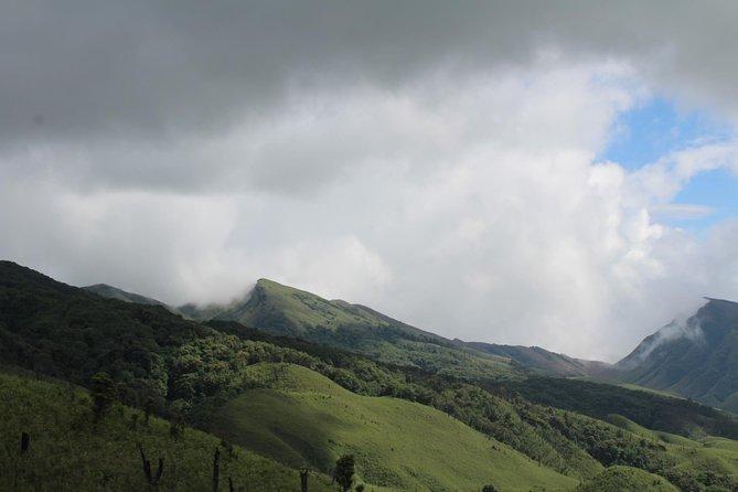 Nagaland & Assam Soft Trekking Tour in Tribal Village & Tea Estate