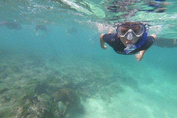 "4 Days Galapagos "" Total Experiences """