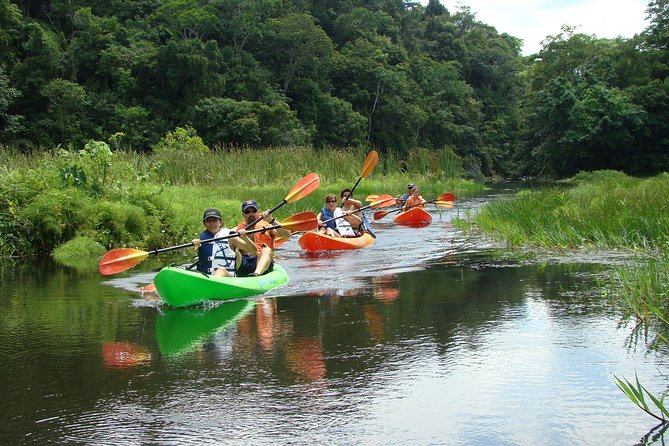 Private Jungle Boat Full-Day Tour from Panama City