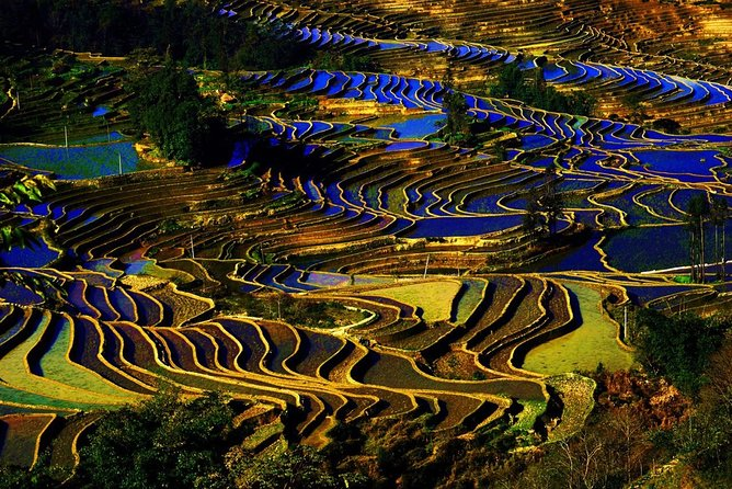 Kunming Private One Way Transfer Service to Yuanyang Rice Terrace