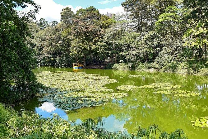 Botanical Garden + Comuna 4 Medellín City Tour 4H